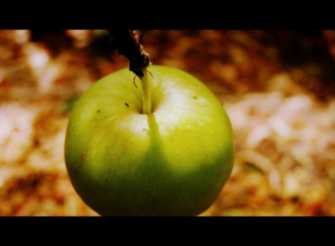 The temptation of Eve2