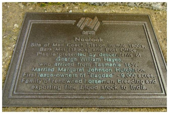 The Noolook plaque